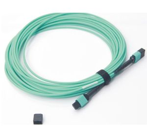 MPO MTP Cable.jpg
